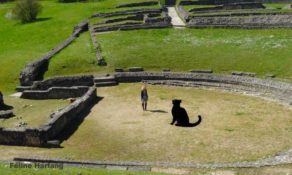féline dans le théâtre romain de St Marcel et le chat noir