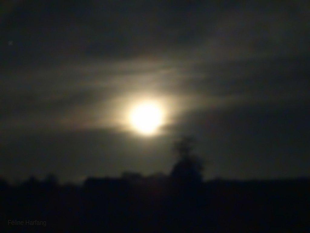 pleine lune 2015 le merle blanc argenton sur creuse