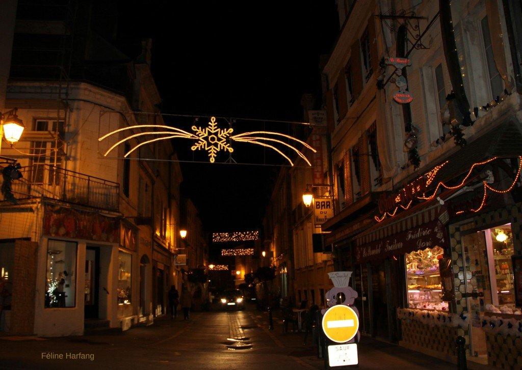 rue semi piétonne - argenton le 30 décembre 2015 - photo féline harfang