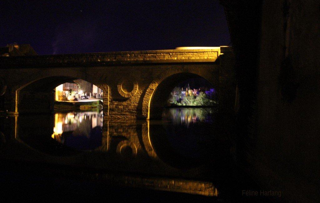 sous le vieux pont d'argenton - photo féline harfang - 30 décembre 2015