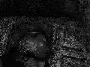 Féline Harfang sur un dolmen de l'Indre