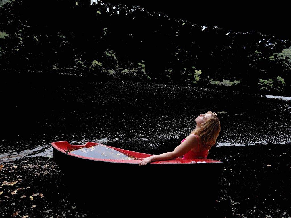 Or noir - photo poème Féline Harfang