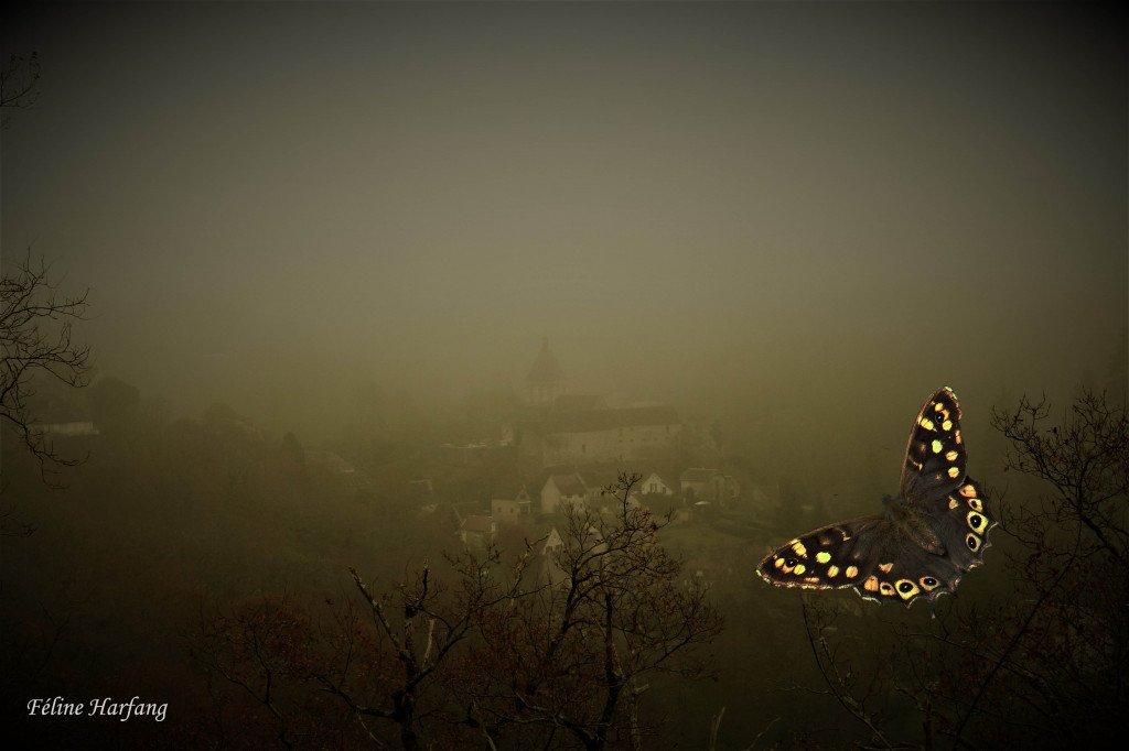 Le papillon de Gargilesse