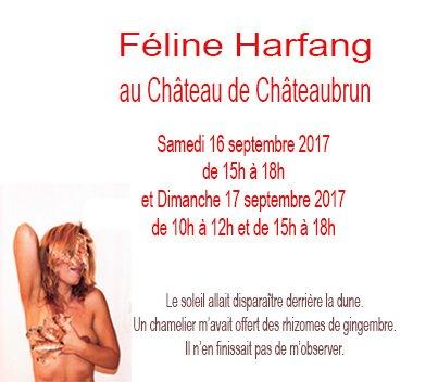 affiche dédicace féline harfang châteaubrun