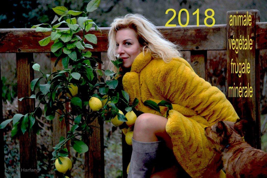 joyeuse année 2018 citrons féline