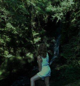 féline devant la cascade 2014 (2)
