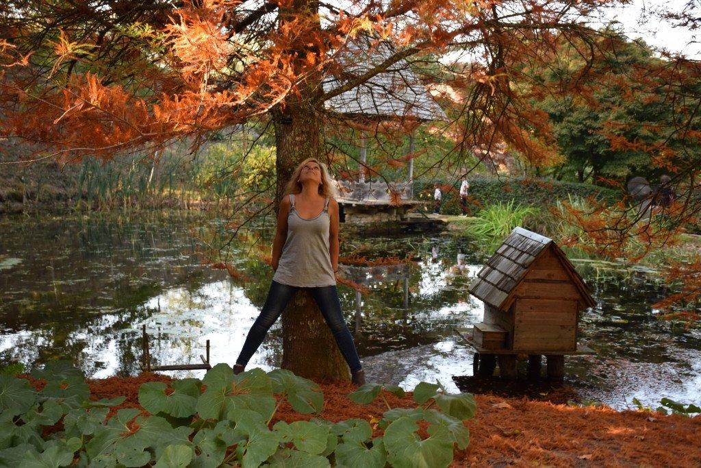Féline Harfang à l'arboretum de la Cédelle